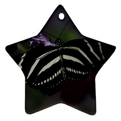 Butterfly 059 001 Star Ornament (two Sides)