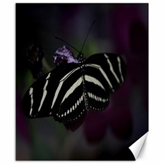Butterfly 059 001 Canvas 8  X 10  (unframed)