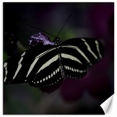 Butterfly 059 001 Canvas 20  x 20  (Unframed)