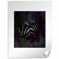 Butterfly 059 001 Canvas 36  X 48  (unframed)