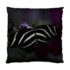 Butterfly 059 001 Cushion Case (two Sides)