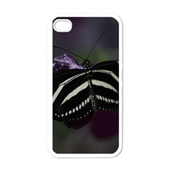 Butterfly 059 001 Apple iPhone 4 Case (White)