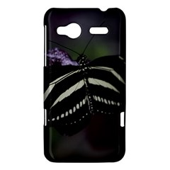 Butterfly 059 001 HTC Radar Hardshell Case
