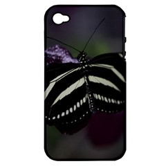 Butterfly 059 001 Apple iPhone 4/4S Hardshell Case (PC+Silicone)