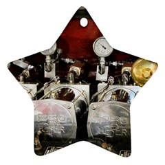 Willytrunk Star Ornament (two Sides)