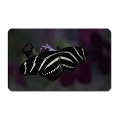 Butterfly 059 001 Magnet (Rectangular)