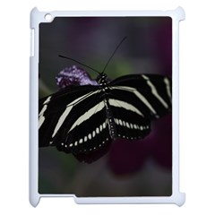 Butterfly 059 001 Apple Ipad 2 Case (white)