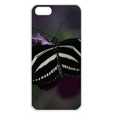 Butterfly 059 001 Apple Iphone 5 Seamless Case (white)