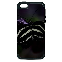 Butterfly 059 001 Apple iPhone 5 Hardshell Case (PC+Silicone)