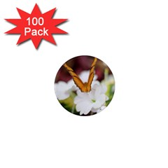 Butterfly 159 1  Mini Button Magnet (100 pack)