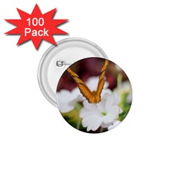 Butterfly 159 1.75  Button (100 pack)