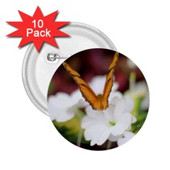 Butterfly 159 2 25  Button (10 Pack)