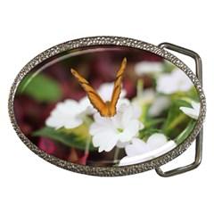 Butterfly 159 Belt Buckle (Oval)