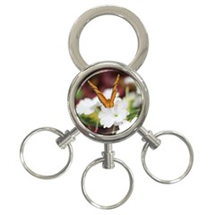 Butterfly 159 3-Ring Key Chain