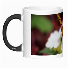 Butterfly 159 Morph Mug