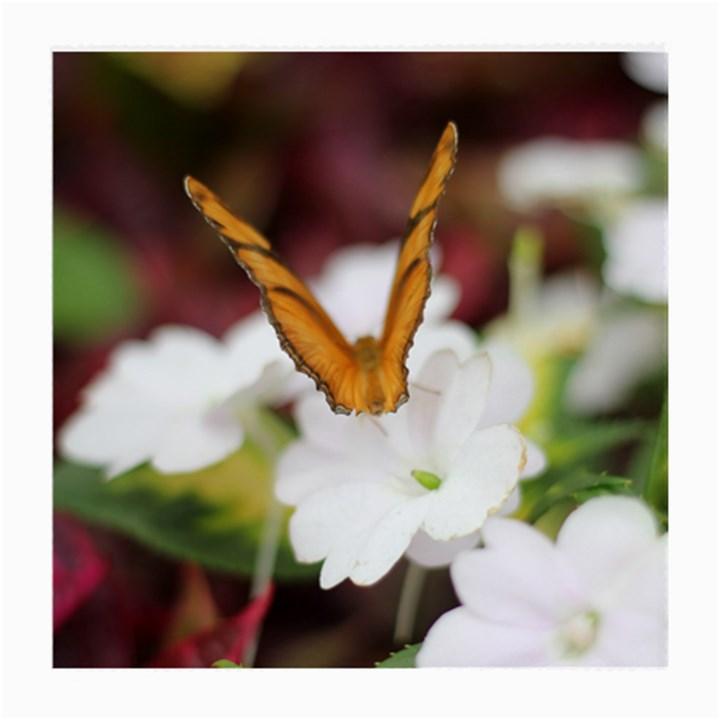 Butterfly 159 Glasses Cloth (Medium)