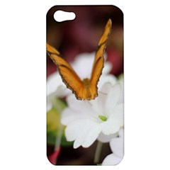 Butterfly 159 Apple Iphone 5 Hardshell Case