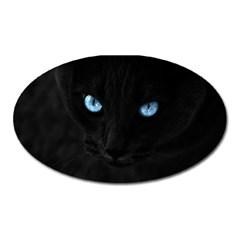 Black Cat Magnet (oval)