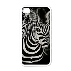 Zebra Apple iPhone 4 Case (White)