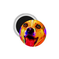 Happy Dog 1.75  Button Magnet