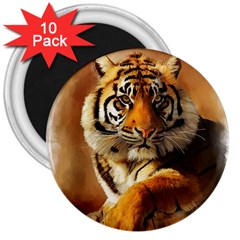 Tiger 3  Button Magnet (10 Pack)