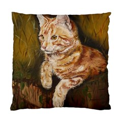 Cute Cat Cushion Case (Two Sides)