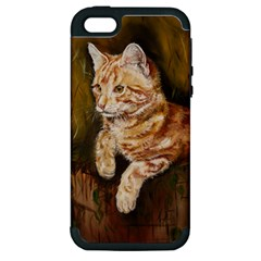 Cute Cat Apple Iphone 5 Hardshell Case (pc+silicone)