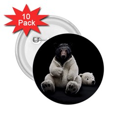 Bear In Mask 2 25  Button (10 Pack)