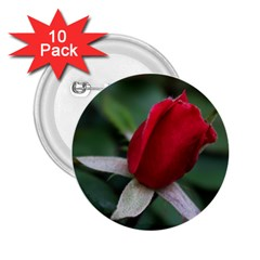 Sallys Flowers 032 001 2.25  Button (10 pack)
