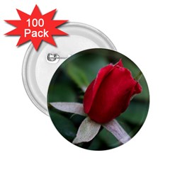Sallys Flowers 032 001 2 25  Button (100 Pack)