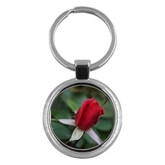 Sallys Flowers 032 001 Key Chain (round)