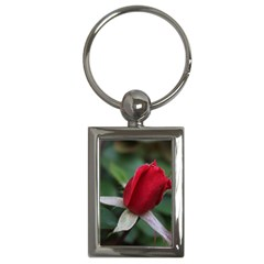Sallys Flowers 032 001 Key Chain (rectangle)