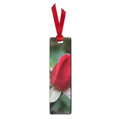 Sallys Flowers 032 001 Small Bookmark