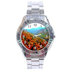 Through The Mountains Stainless Steel Watch (men s)