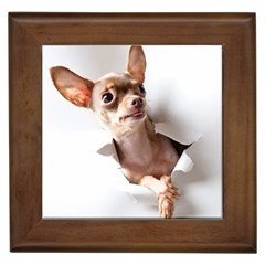 Chihuahua Framed Ceramic Tile