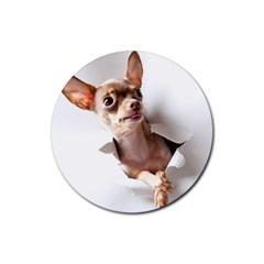 Chihuahua Drink Coaster (round)