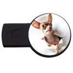Chihuahua 4GB USB Flash Drive (Round) Front