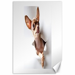 Chihuahua Canvas 20  x 30  (Unframed)
