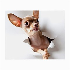 Chihuahua Glasses Cloth (Small, Two Sided)
