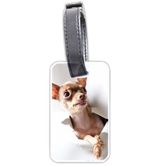 Chihuahua Luggage Tag (Two Sides)