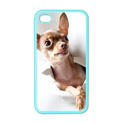 Chihuahua Apple iPhone 4 Case (Color)