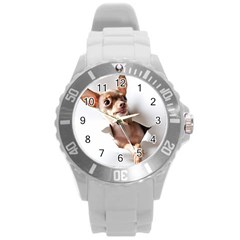 Chihuahua Plastic Sport Watch (Large)