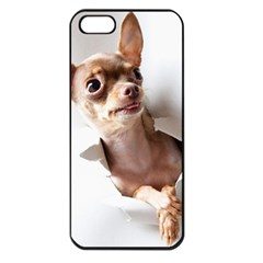 Chihuahua Apple iPhone 5 Seamless Case (Black)