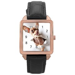 Chihuahua Rose Gold Leather Watch