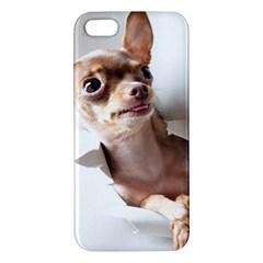 Chihuahua iPhone 5 Premium Hardshell Case