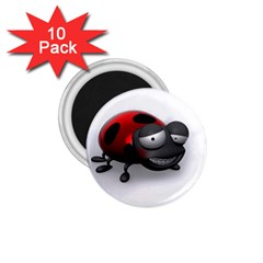 Lady Bird 1.75  Button Magnet (10 pack)