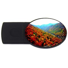 Through The Mountains 2gb Usb Flash Drive (oval)