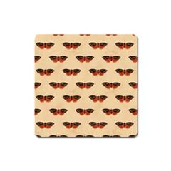 Vintage Moth Magnet (Square)