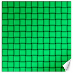 Spring Green Weave Canvas 20  x 20  (Unframed)