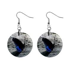 Blue Butterfly Mini Button Earrings